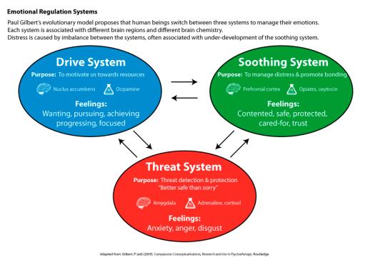 Paul Gilbert's Three Emotional Regulation Systems