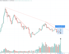 Altcoin Market Bottoms With Highest Buy Volume in Crypto History