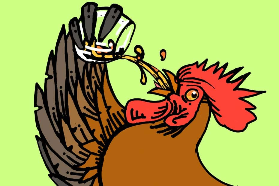 Illustration of a rooster drinking whisky