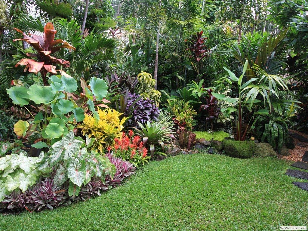 10+ Awesome Ideas How to Make Small Tropical Backyard ... on Tropical Small Backyard Ideas id=67821