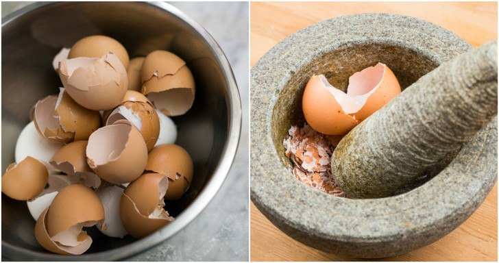 4 Reasons To Eat Eggshells, How To Do It & 12 Other Uses