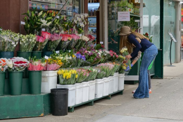 Vybiraet cvety.