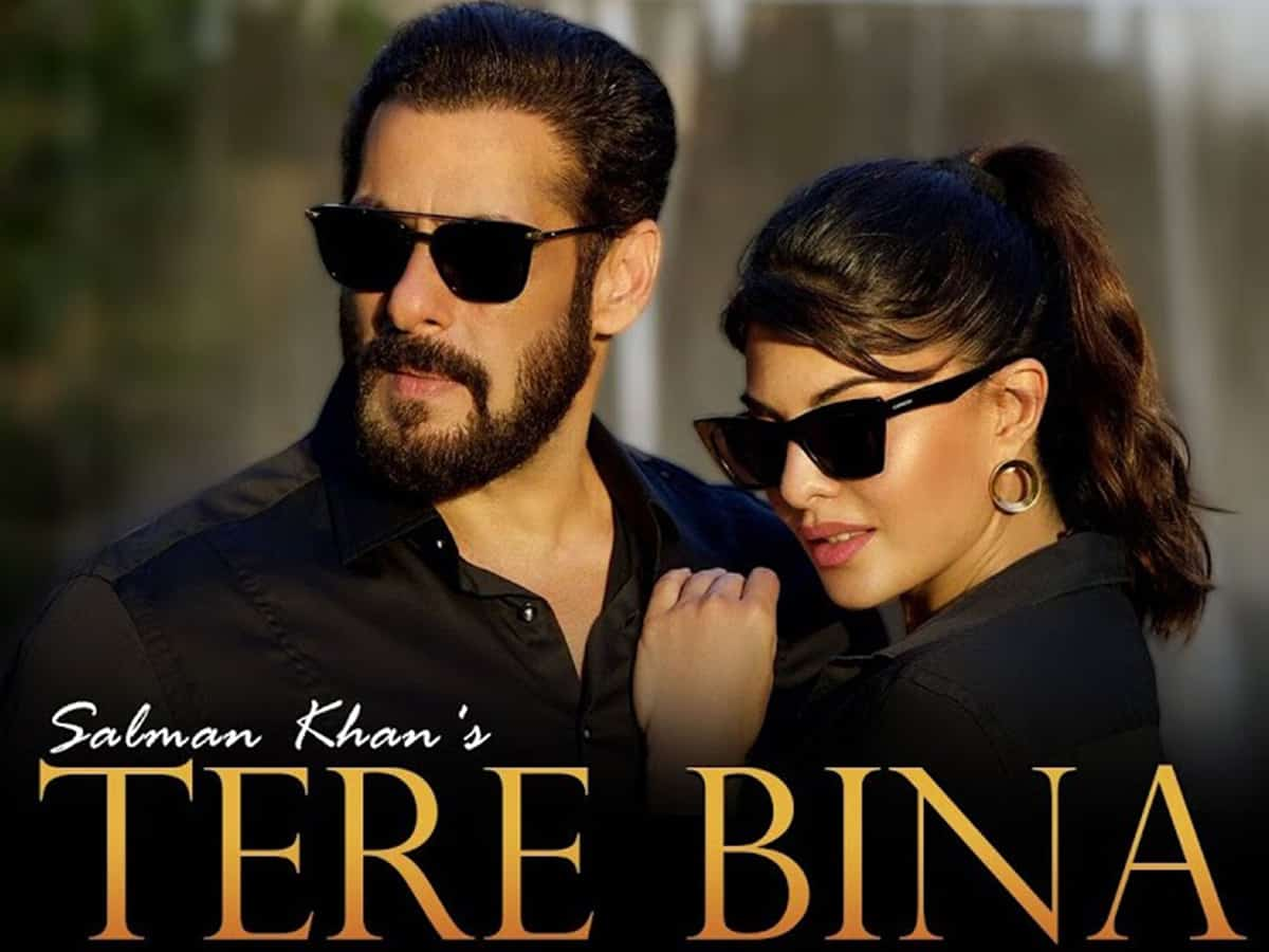 Tere Bina – Salman Khan Mp3 Hindi Song 2020 Free Download