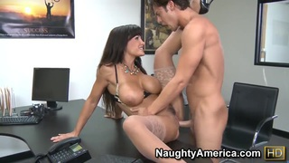 Lisa Ann fucked by Seth Gamble in her office image