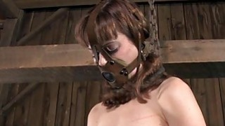 Hotty in latex suit gets cunt and anal_prodding image
