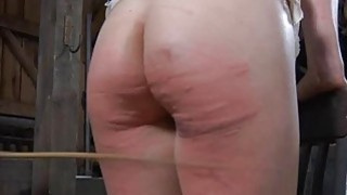 Tied up beauty acquires gratifying for her twat image