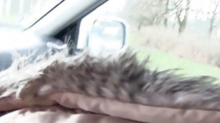Naughty brunette teen bangs in the car image