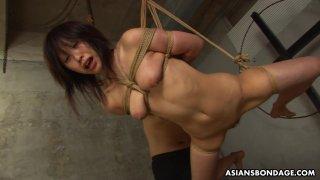 Submissive Asian_bimbo Kana Sato gets_roped and su image
