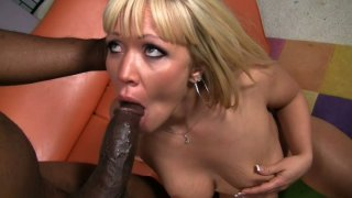 Black dude_Lee Bang gets a nonstop cock sucking from Austin Taylor image