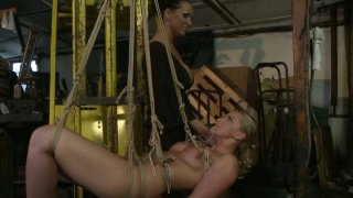 Kinky Kathia Nobili and Mandy Bright are acting dirty_in a_BDSM video image