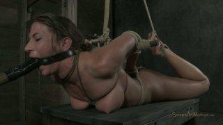 Image: Dirty-minded hooker in hogtie bondage Ariel X moans