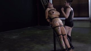 Image: Ugly bitch Rain DeGrey is starring in a hardcore BDSM video_getting her nipples squeezed badly