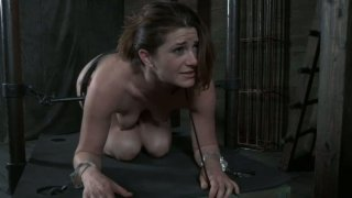 Metal bars smash the belly of Cici Rhodes and keep her in doggy position image