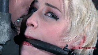 Niki Nymph gets whipped brutally in a hardcore BDSM video image