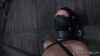 Tatted brunette Hailey Young is showing her skills in_BDSM games image