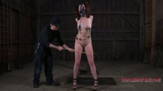 Image: Metal weights stretch Lila Katt's puffy nipples to their limits
