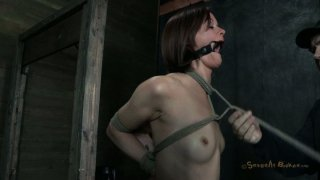 Skinny brunette Hazel Hypnotic is tied to the post and fucked in the mouth image
