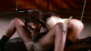 Bulky cock cums in Michelle Avanti elastic ass image