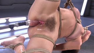 Tied Up Brunette Anal Machine Fucked image