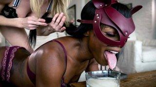 Blonde keeps Ebony BDSM Sex-Goddess Ana as Cat! image