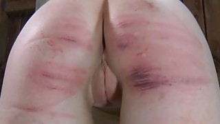Tied up beauty acquires tongue and_facial torment image