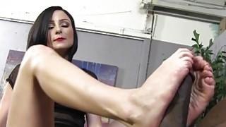 Veruca James_Porn Videos image