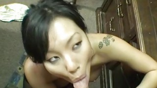 Asian girlfriend nibbling on a dick straight up » moom vidio image
