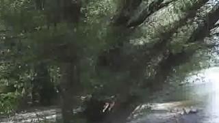 Amateur bigtit deepthroats by river for cash image