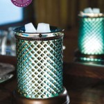 Scentsy Fall Winter 2013 Catalog