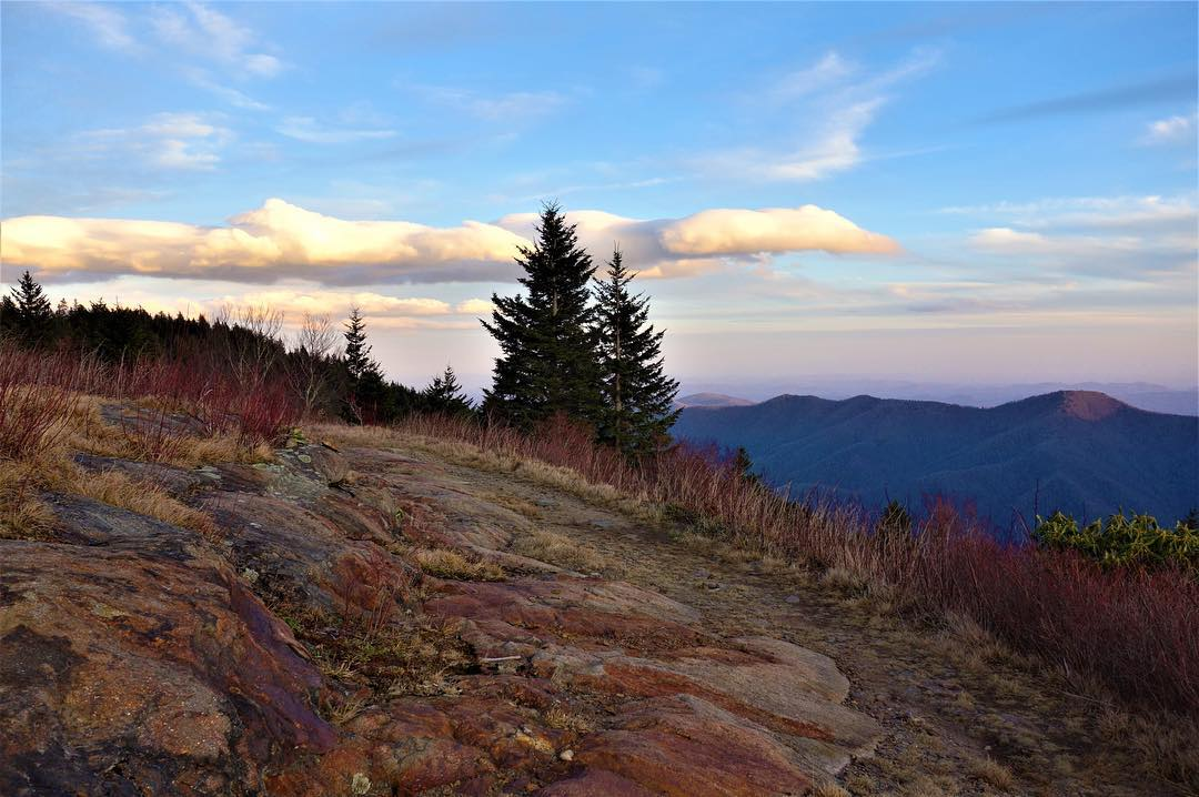 Ultimate Guide To Mount Mitchell State Park W Photos