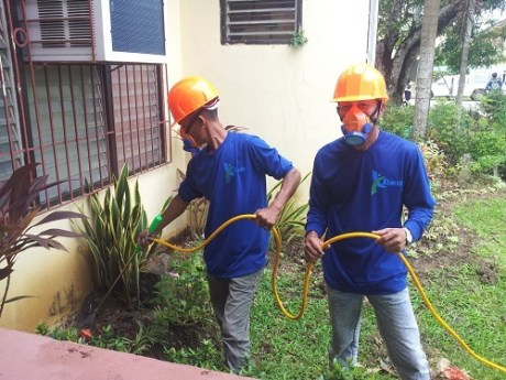 Pest Control Professionals Applying Pesticides