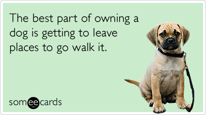 Funny Pets Ecard: The best part of owning a dog is getting to leave places to go walk it.