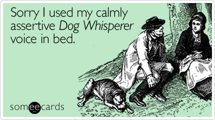 someecards.com - Sorry I used my calmly assertive Dog Whisperer voice in bed