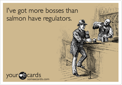 someecards.com - I've got more bosses than salmon have regulators.