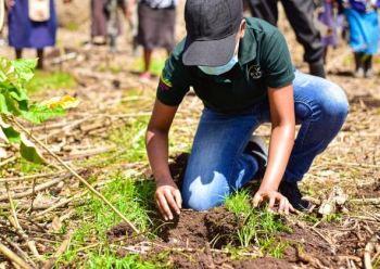 Groups launch bid to reclaim Mt Kenya