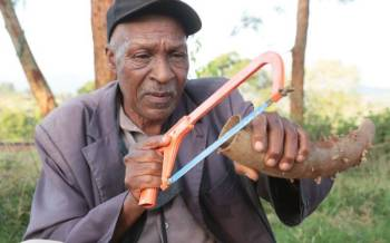 The horn collector: He makes a living from decorating cow horns