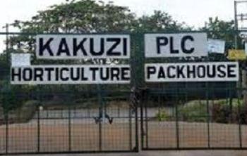Kakuzi sues rights activists over abuse case