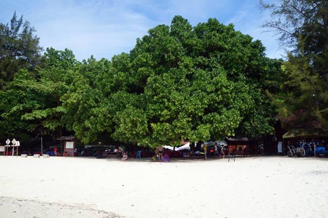 Pantai Pasir Putih di Pulau Sapi.