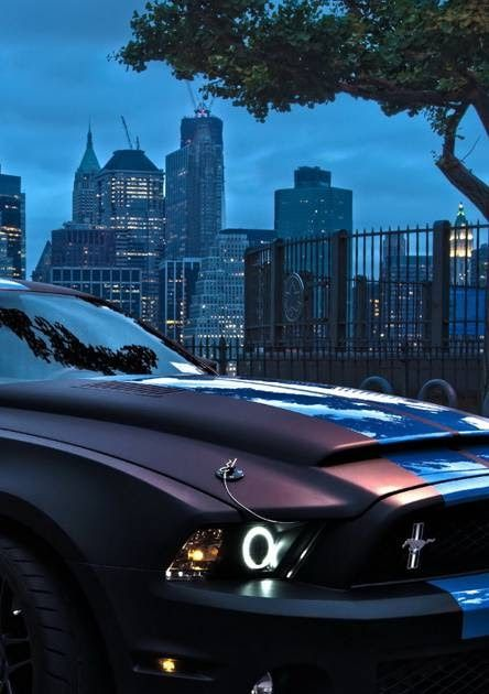 Here are our picks for the best iphone apps for when you're on the move. 2015 Mustang Iphone Wallpaper