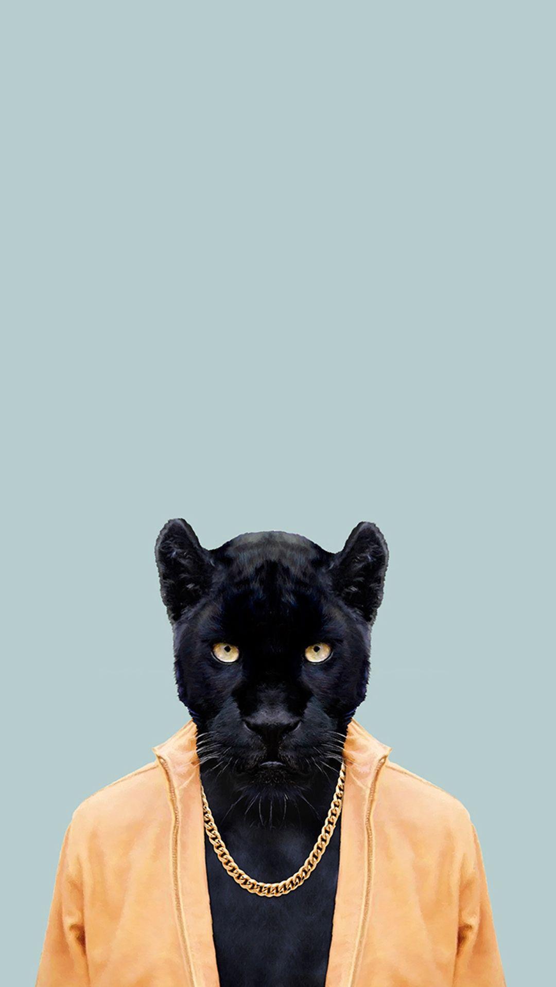 jaguar cars car orange car sport car. Black Panther Black Jaguar Wallpaper Hd Iphone