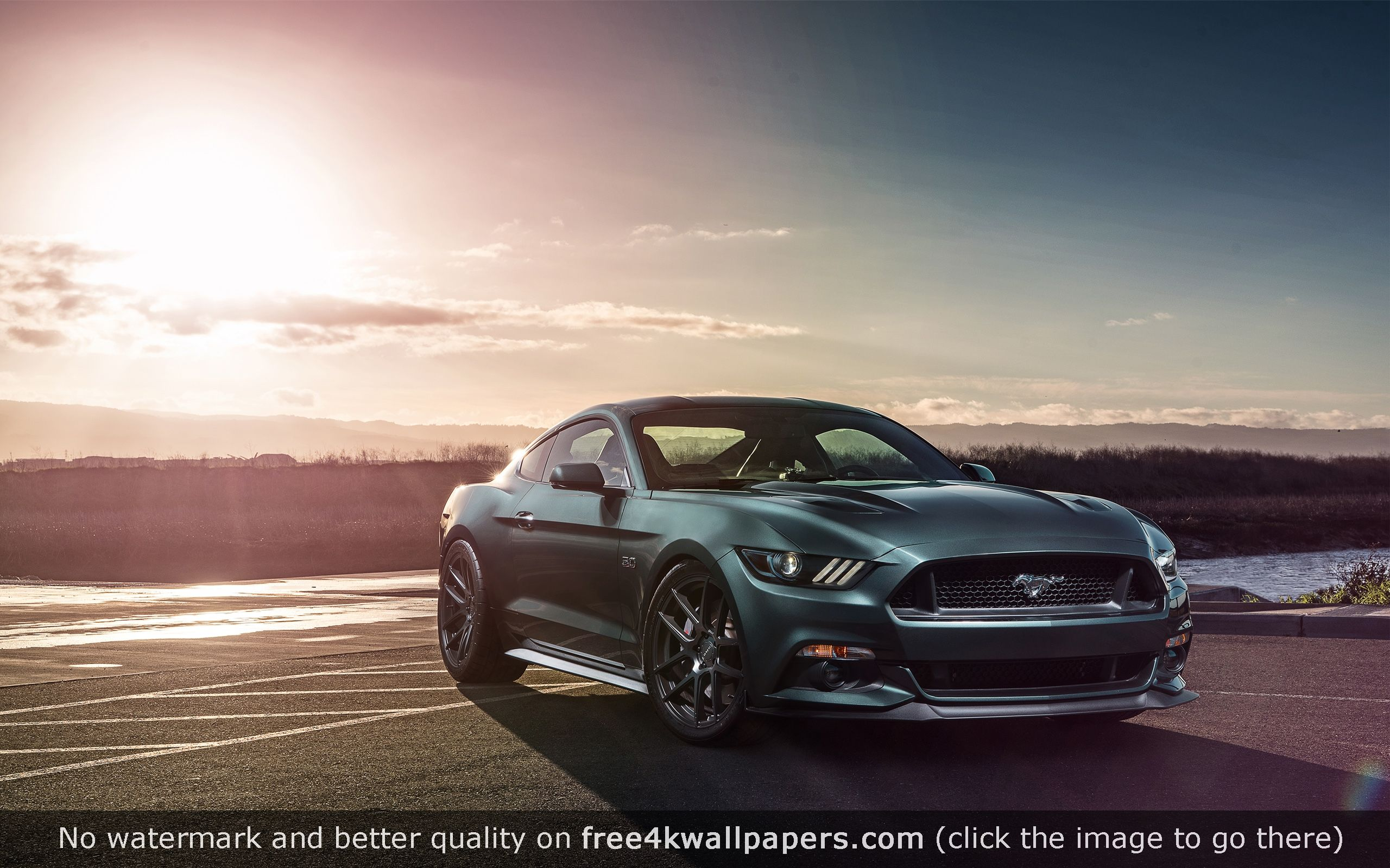 Download 1920x1080 mustang shelby, mustang, car, muscle car, blue, road wallpaper, background full hd, hdtv, fhd, 1080p Mustang Car Wallpaper 4k