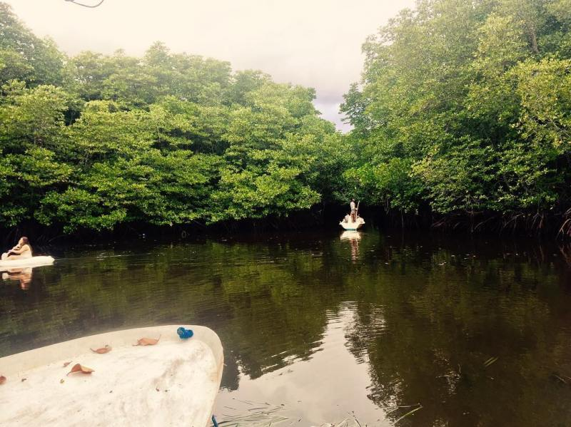 Traveling around the Nusa Lembongan Mangrove Forest is fun! via @sugix_veyron