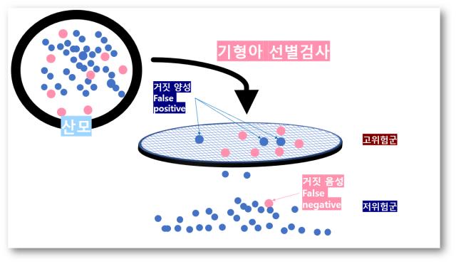 기형아 선별검사2