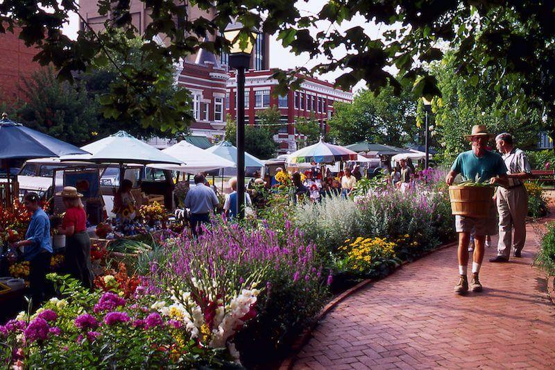 Fresh Market Fayetteville Ar