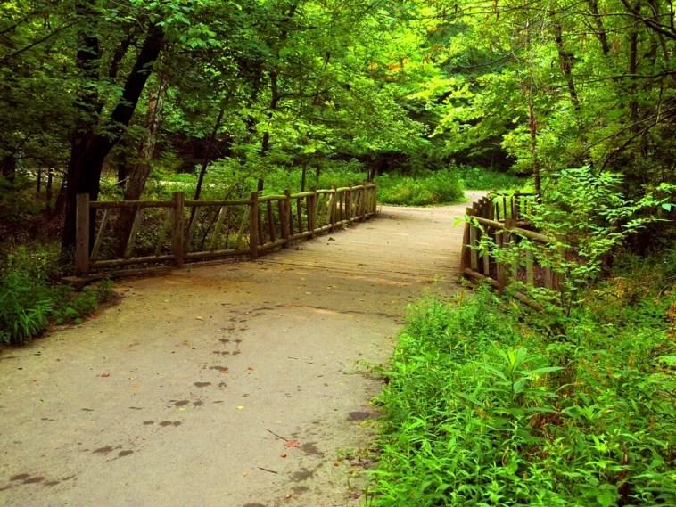 Cherokee Park trails in Louisville KY