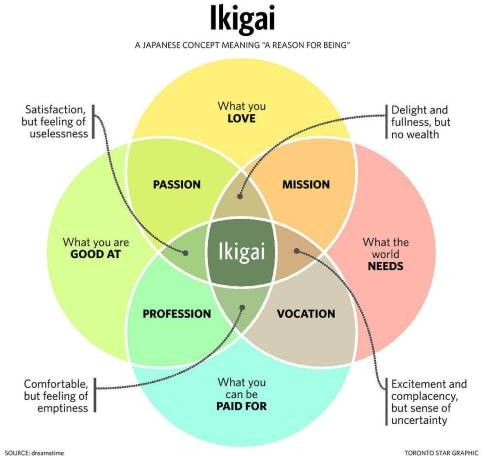 Image result for meaningful work ikigai