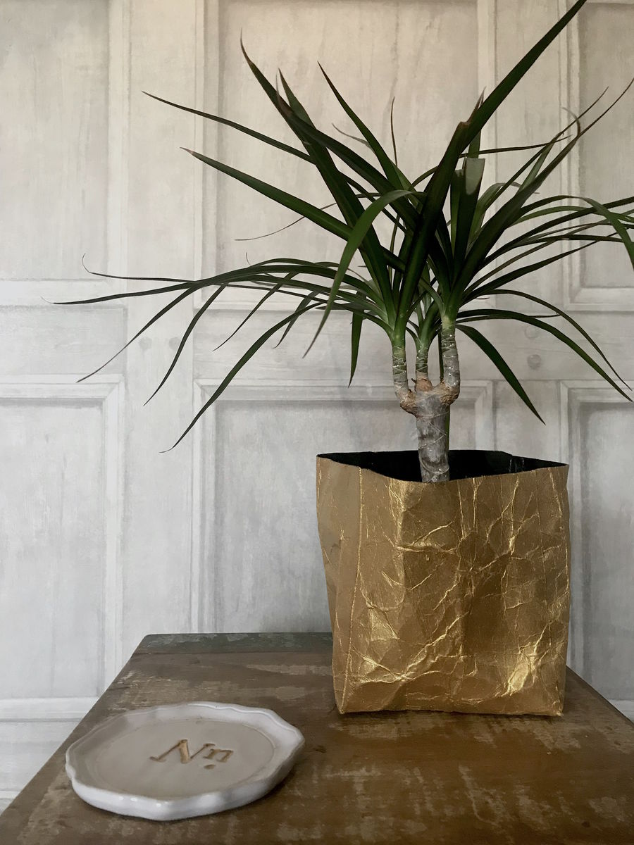 Metallic Gold Recycled Basket Planter  - product images  of