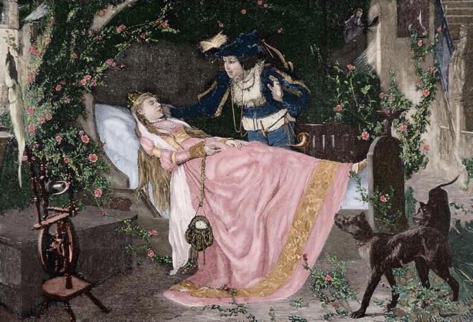 Resultado de imagen para la bella durmiente ilustracion