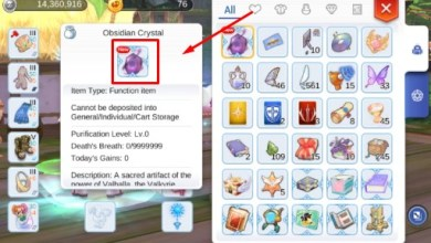 Photo of Cara Unlock Job 3rd Breakthrough Ragnarok Mobile (Job Lv. 41-60)