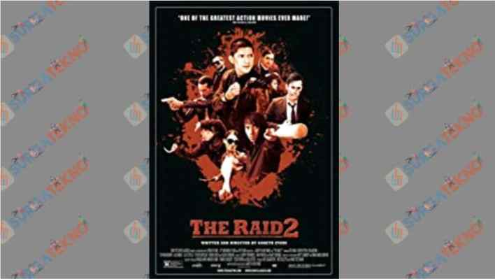 The Raid 2 (2013)